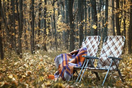Two folding sun loungers and a warm woolen plaid in the forest in autumn among the fallen foliage, cozy autumn concept, selective focus