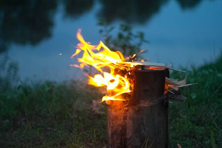 Close up of a burning bonfire in the forest, firewood and embers on fire by the river, selective focus