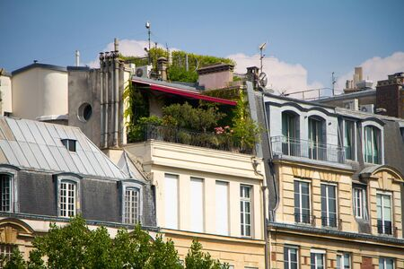 Attic balcony with many green plants on the top floor of building in the historical center of Paris Zdjęcie Seryjne