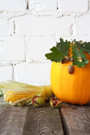Autumn pumpkins and other vegetables on wooden thanksgiving table, white brick backdrop, selective focus