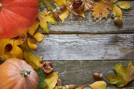 Thanksgiving autumn background on a dark wooden surface, pumpkins, withered leaves, acorns and chestnuts, selective focus