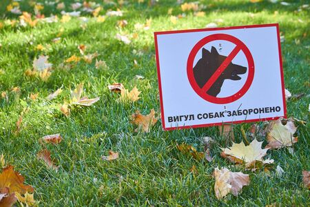 Green lawn with fallen maple leaves and sign with the inscription in Ukrainian: dog walking is prohibited
