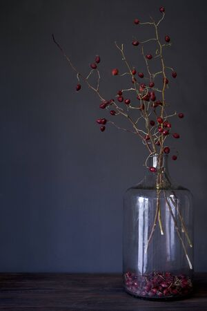 Big glass bottle with branches of dry red rosehip on wood table, selective focus Reklamní fotografie