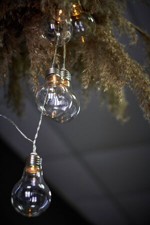 Bottom view composition of reeds and garland of light bulbs, selective focus Reklamní fotografie