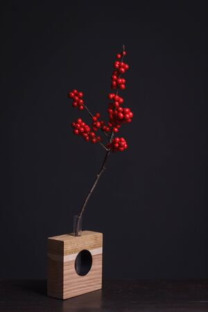 Holly branch with red berries in wooden vase on a dark background, selective focus Stock Photo