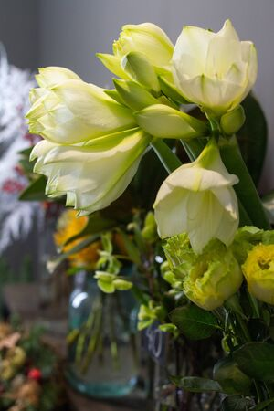 Close up flower shop window with hippeastrum white flowers, selective focus