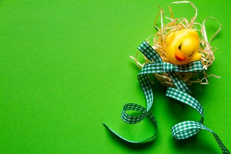 Top view of yellow rubber duck in a straw nest on green background and checkered green bow, minimalistic easter concept or background
