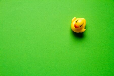 Top view of yellow rubber duck on green backdrop, minimalistic concept or background