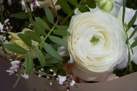 Detail close up of romantic bridal or congratulatory bouquet, light gray background, selective focus