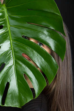 Beautiful brunette girl with long hair looks through monstera leaf on black backdrop, selective focus