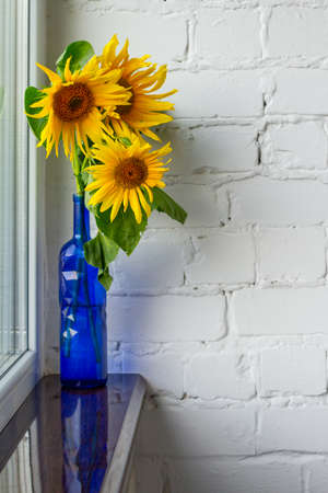 Bouquet of blooming yellow sunflowers in blue glass vase on windowsill, selective focus Stok Fotoğraf