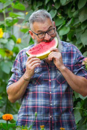 Portrait of mature bearded male farmer with red ripe watermelon, own harvest concept, selective focus