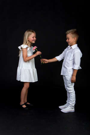 Studio portrait boy gives girl single carnation flower, congratulatory concept, black background, copy space
