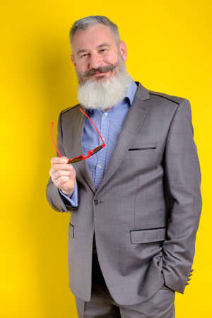 Studio portrait mature bearded man in gray business suit looking to camera, work profession lifestyle, yellow background.