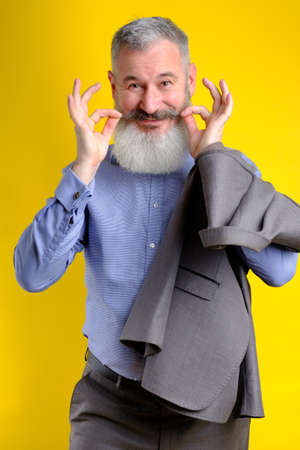 Studio portrait funny bearded man in gray business suit looking to camera, work profession lifestyle, yellow background. 版權商用圖片