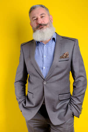Studio portrait mature bearded handsome man in gray business suit looking to camera, work profession lifestyle, yellow background.