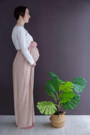 Studio portrait of elegant young adult pregnant woman in white beige dress with green tropical plant, happy pregnancy concept Banco de Imagens