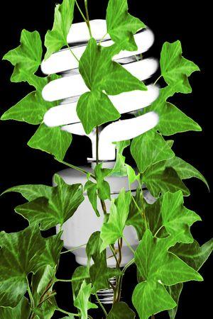 florescent light: Compact green friendly florescent light Stock Photo