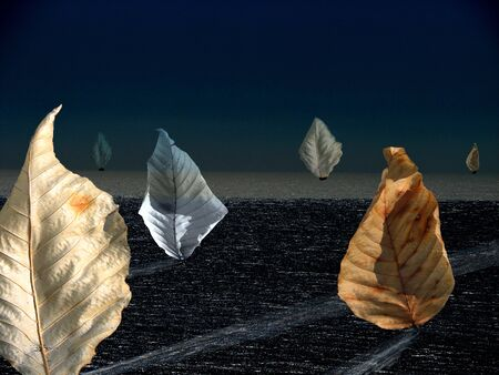 Abstract leaves sailing in the moonlight photo
