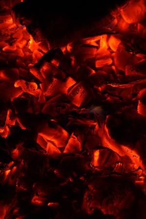 Red hot wood coals