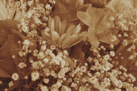 Texture et ancienne image de fleur de temps