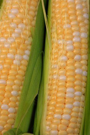 Close up of peaches and cream corn