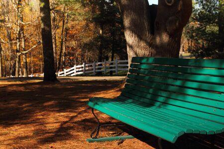Une vue sur un banc de parc en milieu automne  Banque d'images