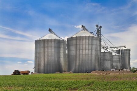 grain fields: Modern metal silo with blue sky background Stock Photo