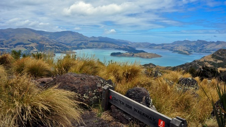 Beautiful day for the Crater Rim Hike. Lyttleton Scenic Reserve. New Zealand Stock Photo - 8432338
