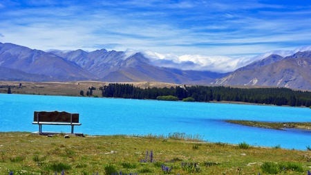 A bench by the wildflowers and turquoise waters of glacial Lake Tekapo. South Island, New Zealand Stock Photo