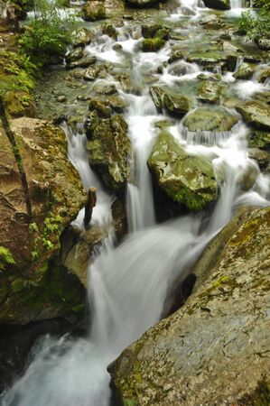 Waterfall in the forest on Routeburn Trail. New Zealand Imagens