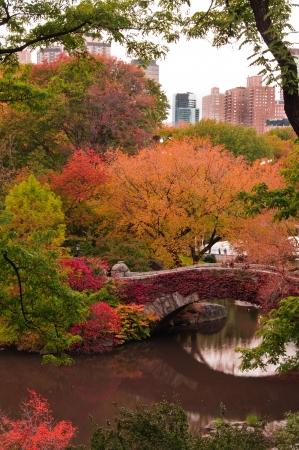 central: Colores de oto�o en Gapstow Bridge. Central Park, Nueva York Foto de archivo