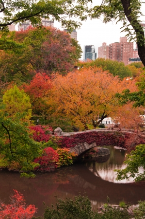 conservatory: Fall colors at Gapstow Bridge. Central Park, New York City Stock Photo