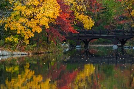Prachtige herfstkleuren in het Oak Bridge (Bank Rock baai), Central Park. New York City Stockfoto
