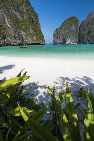 Maya bay Phi Phi Leh island, Thailand Zdjęcie Seryjne