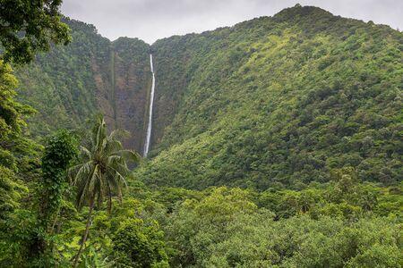 The 1450 ft tall Hiilawe waterfall in the Waipio Valley. Big Island, Hawaii