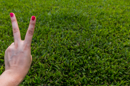 two fingers: Two fingers on green background