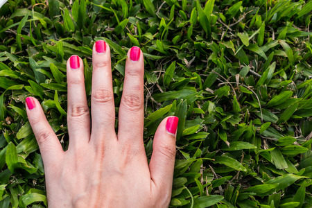 middle finger: Five fingers is pink nail on green background