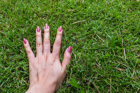 five fingers: Five fingers is pink nail on green background