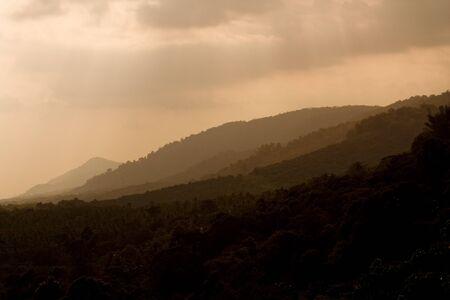 tamilnadu: Beautiful corners of the hillstation in munnar india tamilnadu