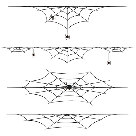 arachnid: Spiders and cobweb on white background Illustration