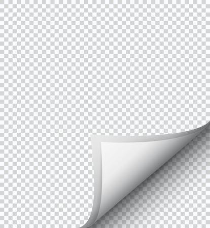 hoja en blanco: hoja de papel blanco a cuadros. la página rizado. Vectores