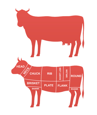 Cow. Scheme cuts of beef. Vector Illustration.