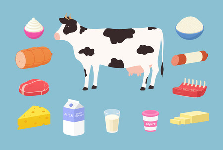 Dairy products and meat products from cows. Set of butter, yogurt, milk, hard cheese, rib, steak, sausage, cream, cottage cheese. 일러스트