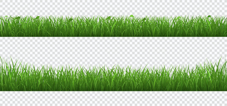 Green grass with plants border set isolated on transparent background. 일러스트