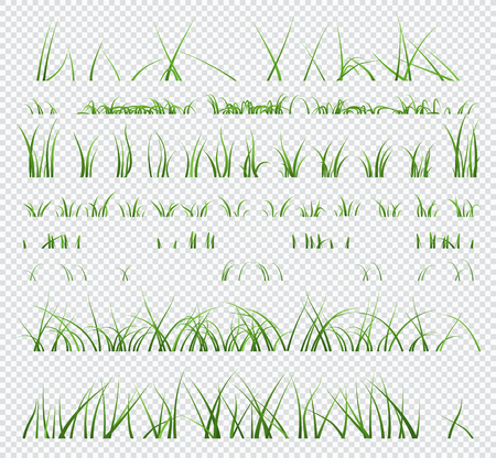 Set of elements green grass isolated on transparent background.
