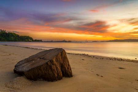 Dead tree trunk during sunset on a beach at Kota Kinabalu, Sabah, Malaysia Reklamní fotografie