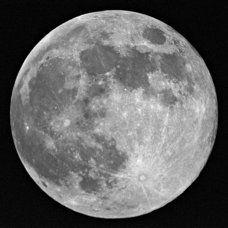 loup garou: Pleine lune en noir et blanc  Banque d'images