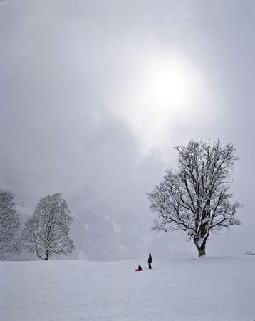 Winter Snow Scene Mom Child Sled Reklamní fotografie