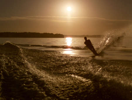water skier: Water Skier